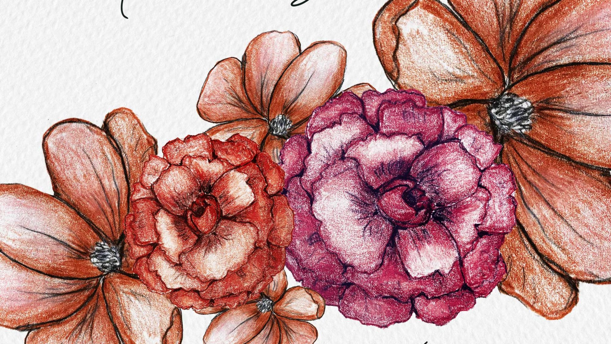 color pencil flowers